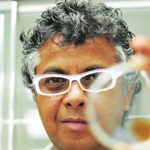 Portrait of Prof. Sanat Kumar
